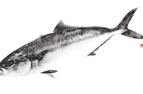 デジタル魚拓 モノクロ魚拓